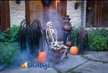 Halloween Ideas / Make this year's Halloween Spooktacular and a screaming success with these hauntingly fun Halloween party ideas. Zombies, vampires, and witches... oh my! / by Shindigz
