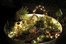 fairy gardens / by Goldie Johnson Pontrelli