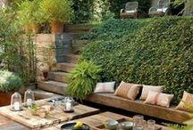 Garden / #garden