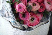 Birds & Bots | Flowers / Flowers make me happy