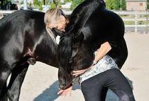 Horses 101 / Equestrian  / by Jeanette Walker