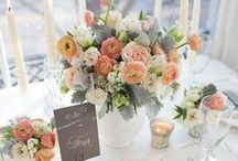 *Wedding Planning* / Tips, tricks, and inspiration for your Big Day / by James Allen Rings