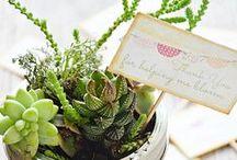 Creativity:: Gift ideas / Fun gifts to make or buy / by Tabitha Dumas