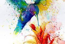 Birds & Flourishes / Bird reference files & flourishes