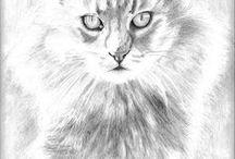 Animal & Pet art