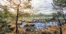 Rural landscapes / Landschaften und sehenswerte Orte auf der ganzen Welt.