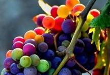 colour / by Love It Love It Love It (Ruth)
