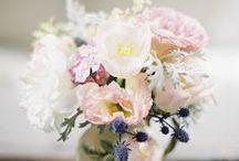 jolies fleurs / flowers / by jujuliliette