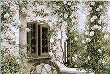 My Garden Whites ღღ
