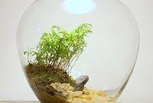 mini garden / Beautiful tiny little gardens