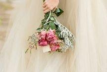 Petals of Love~♡