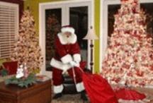 christmas / A special Christmas / by Sandy Hazel