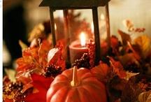 Autumn / by Jo Thumann