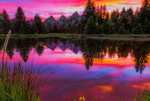landscape / by Gina Dewan