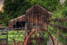 barns / by Gina Dewan
