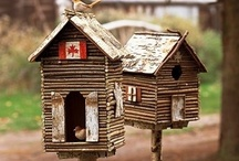 Bird houses / by Gina Dewan