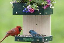bird feeders / by Gina Dewan