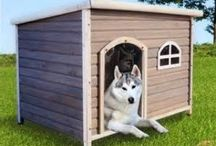 Dogs DIY - Toys, beds & clothing / Toys, training, costumes... you name it.