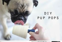Dogs DIY - Food
