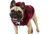 Dog Apparel / Let your dog show their style and attitude with our super cool dog apparel!