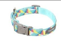 Dog Collars / Your dog needs to hit the pavement in style... help them along with FuzzYard collars and leads!