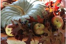 Autumn / by Sandra Fernandez