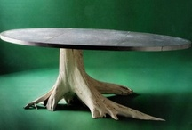 Furnishings Inappropriate for a Home with Rats / by abra adduci