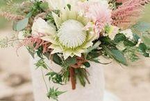 Buquê com Protea | Casamentos / Muitas inspirações de buquês com protea.