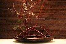 My Crib # 2 Zen / Japanese and other Natural Decor / by Jo Escher