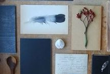 objects/collections. for tess