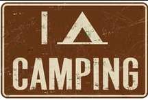 Camping / by Meredith Barracato