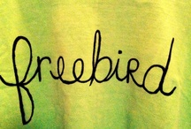 The art of FreeBird