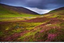 Scotland (Its In My Soul)