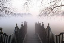 Fog / You never know what might come out of the FOG