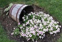 Gardening & Spaces