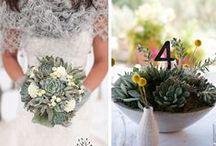 Dream Wedding / by Diana Dominguez