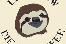 SLOTH!  / A board to fill with adorable sloths.  / by sewzinski