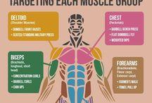Training / Exercise