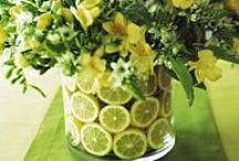 Spring decor / by Renee Carter