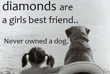Dogs Are A Girl's Best Friend / by Mandy Nowak