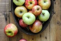 APPLE / Celebrate one of Fall's most magnificent flavors with these apple inspired recipes!