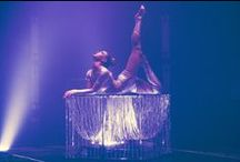 Contorsion / Talents & Productions is an international talent agency and show agency specialized in all type of circus, magic, variety acts and shows for your events, TV shows, circuses, theme parks, ... We have a wide range of artists: acrobats, jugglers, comedy acts, magicians, german wheel acts, chinese pole acts, close-up magician, rola-bola, handbalance acts, trampoline, teeterboard, illusionists   Talents et Productions est une agence artistique et agence de spectacle basée à Monte-Carlo (Monaco).