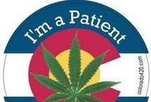 Cannabis God's Natural Medicine / by Nicole Makris