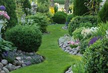Garden / by Janice Mitchell