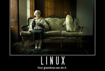 Flavors of linux