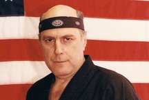 Hanshi Stephen Kaufman / Hanshi Stephen Kaufman, Shodai Soke, Hebi-Ryu Budo (School of the Snake), a true founding father of American Karate, with over a half-century of experience in the martial arts. http://www.hanshi.com/