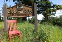 The Red Chair Visits Chehalem Ridge B&B / The Red Chair spent a week with us visiting our B&B and got to explore our local communities. / by Chehalem Ridge B&B