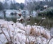 L'hiver / #hiver #winter #l'hiver #neige #givre #glace #froid #snow #ice