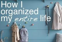 Getting Organized...