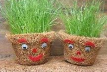 Grassheads / Lots of ideas about all the different types of grassheads you can grow.  {Brought to you by Kidsinthegarden a site that's packed full of great kids' gardening and outdoor activities - come and visit us!}